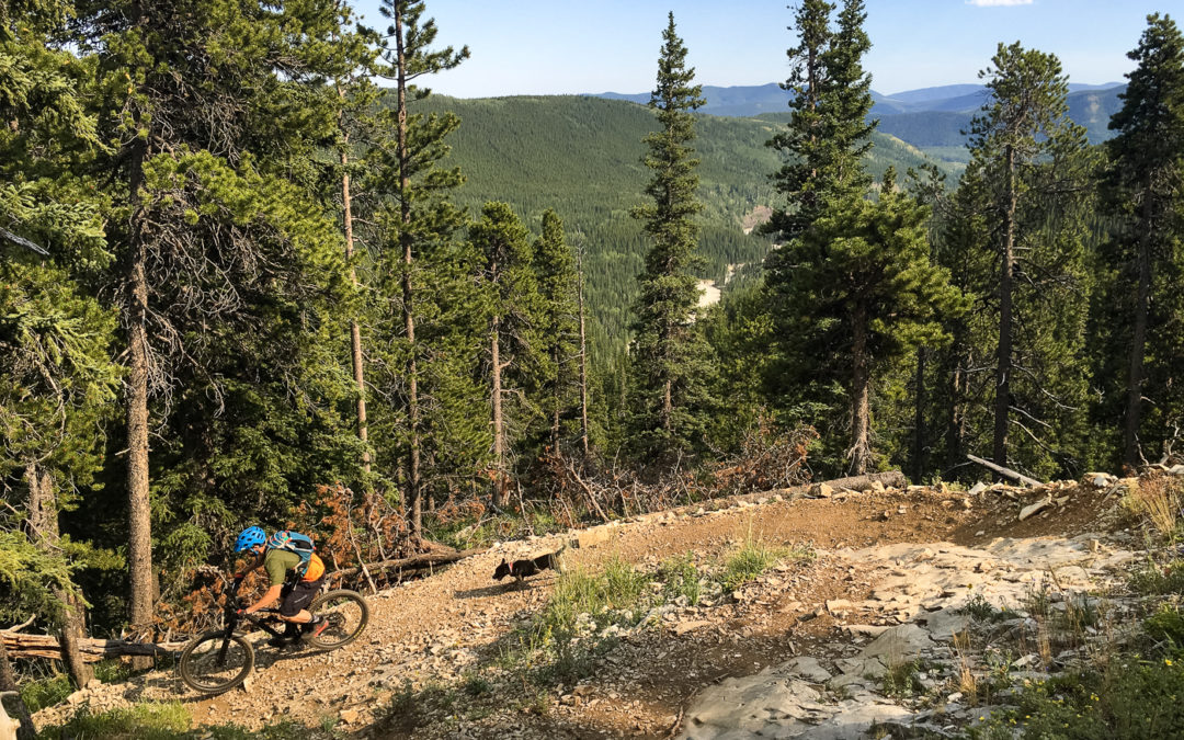 Day 8 – Mountain Biking at Moose Mountain in Alberta